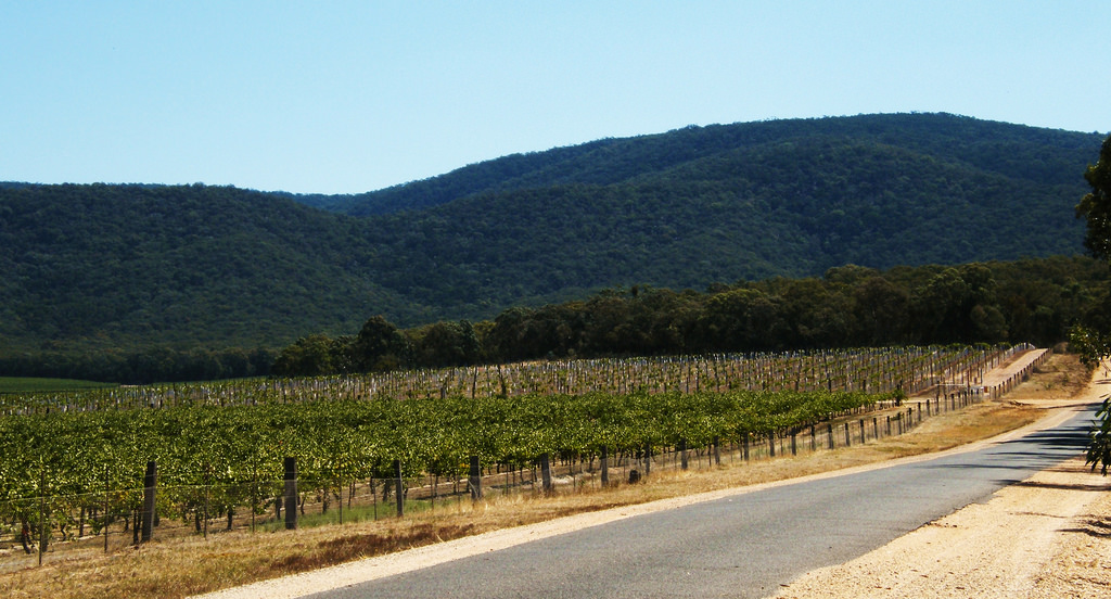 Pyrenees Victoria Winery Limo Tours